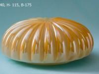 Ракушка золот. осн.175